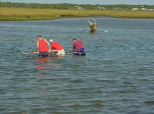 Recreational Shellfishermen